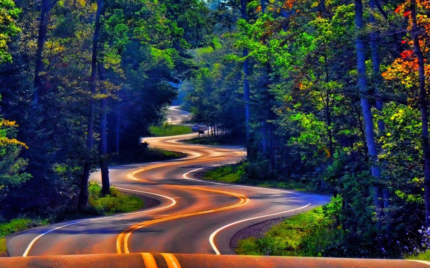 Forest Road Wallpaper for Android