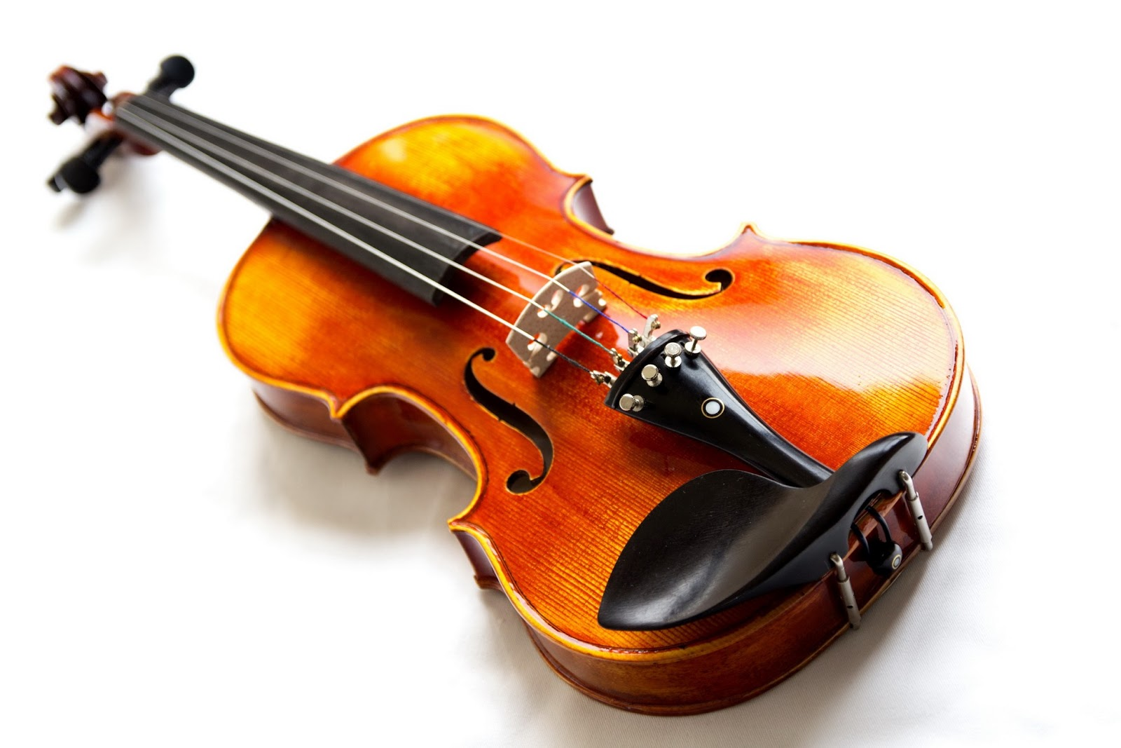 Brown Violin On White Background Wallpaper Wide