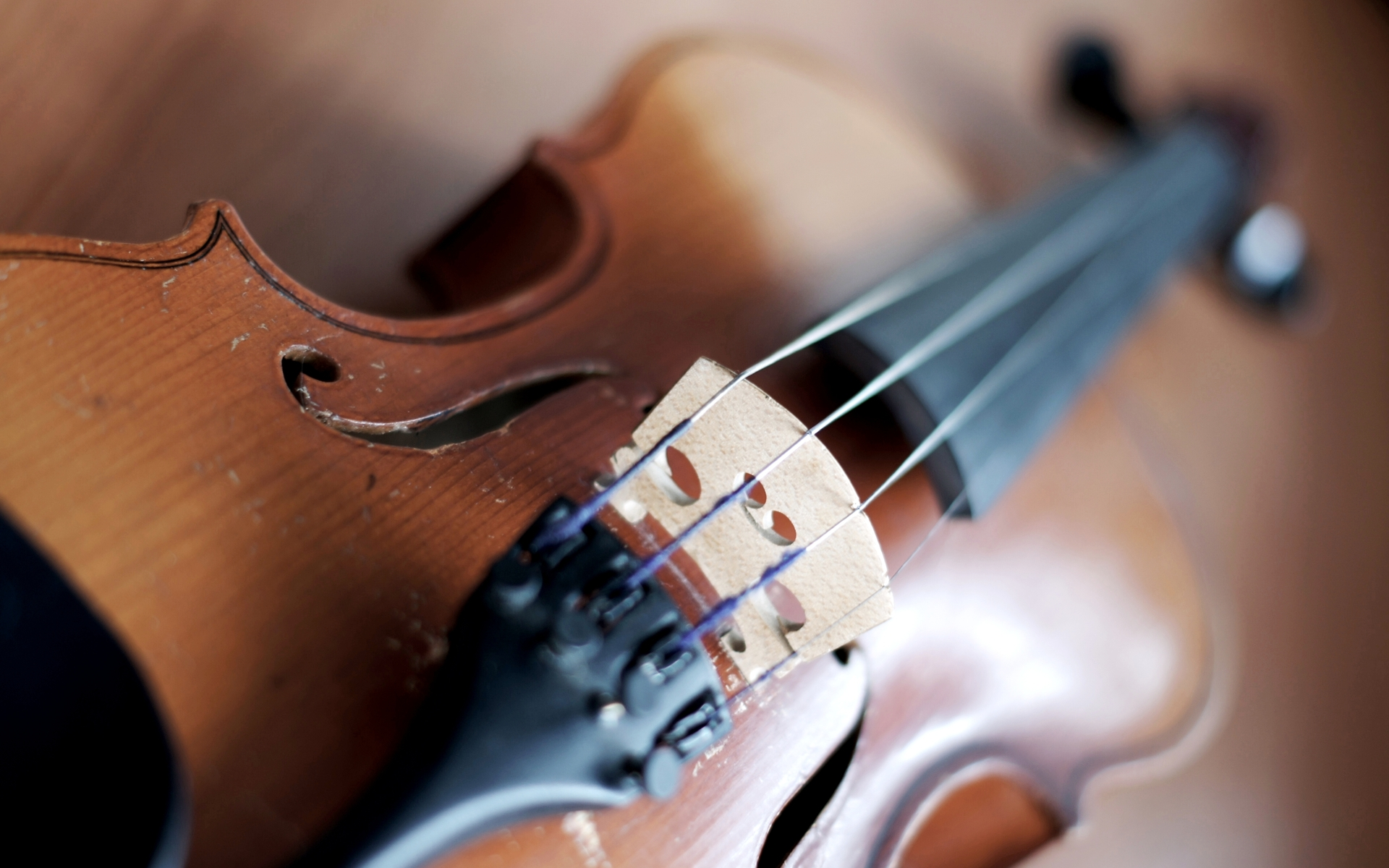 Close Up Violin Wallpaper Free