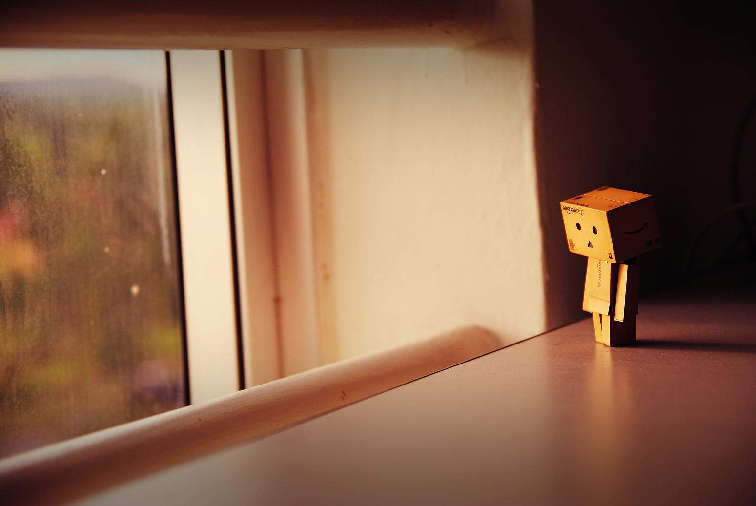 Danbo Alone At Home Wallpaper Pc