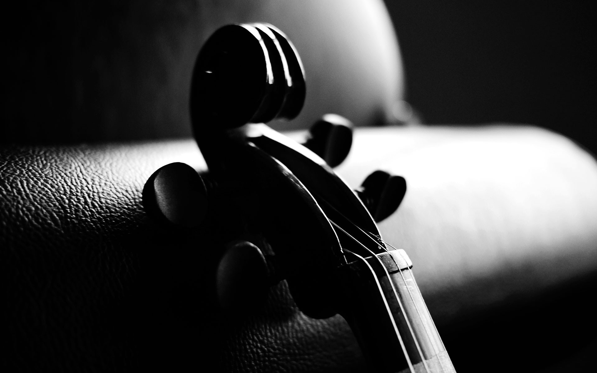 Violin Black And White Wallpaper HD