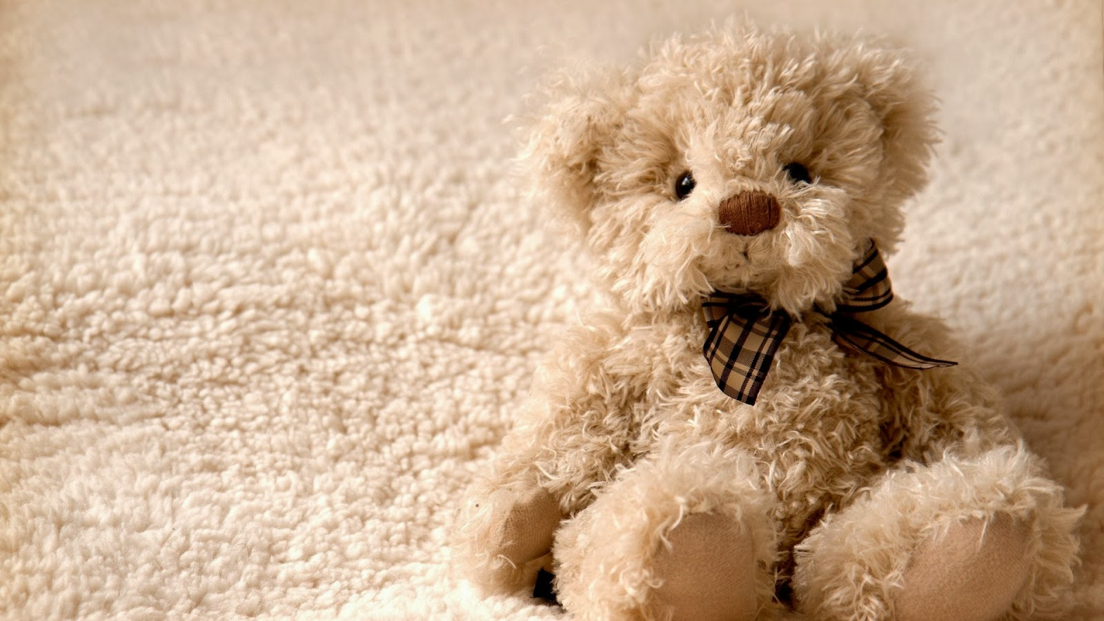 Alone The Teddy Bear Wallpaper HD