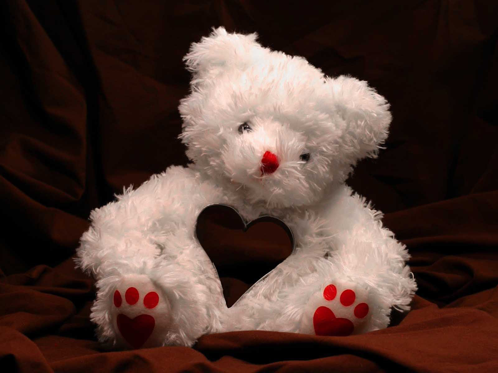 Love White Teddy Bear Wallpaper