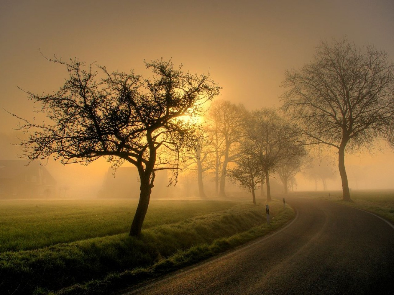 Sunrise Country Road Wallpaper Android
