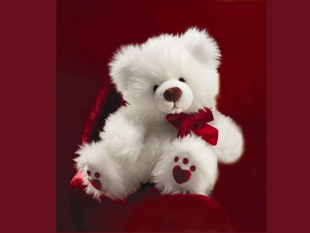 Sweet Teddy Bear Alone Wallpaper Pc
