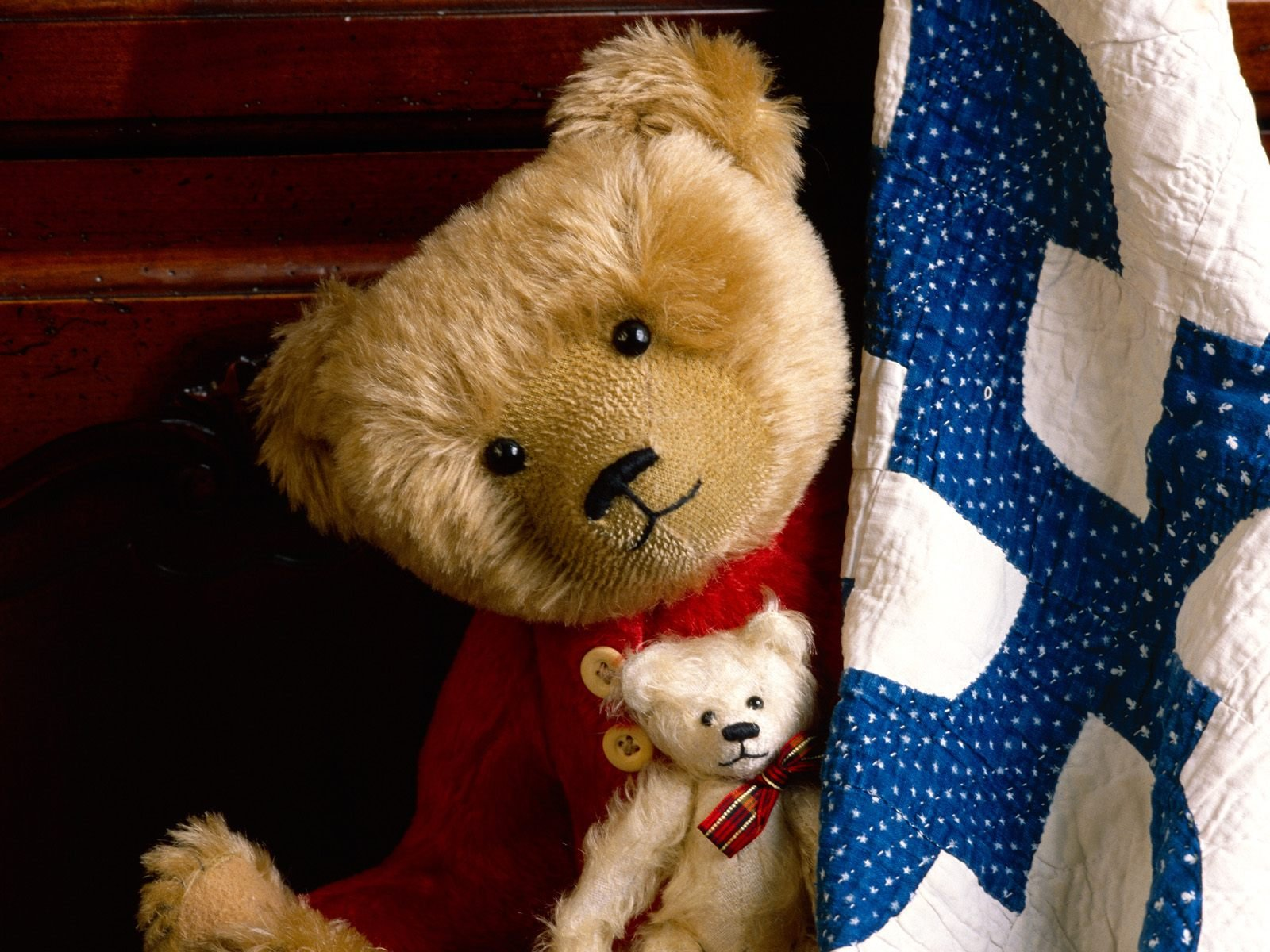Teddy Bear Doll Wallpaper