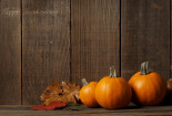 Pumpkins Thanksgiving Wallpaper HD
