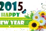 Best 2015 New Year Wallpaper iPhone