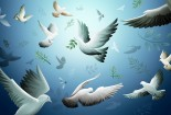 white-pigeons-and-world-peace